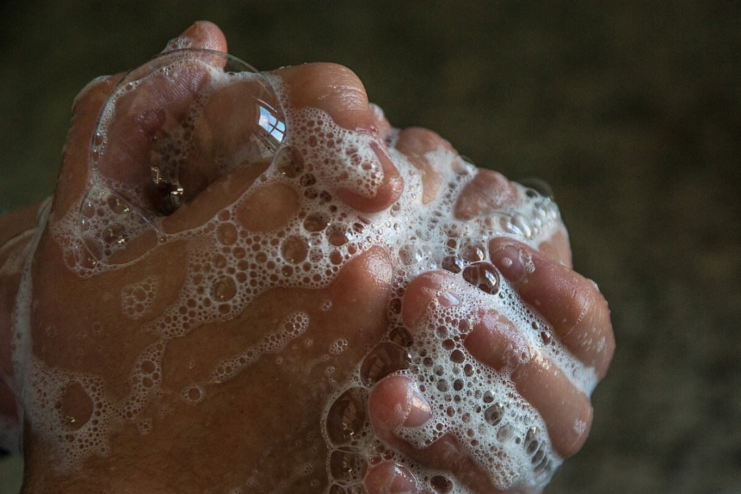 photo of soapy hands